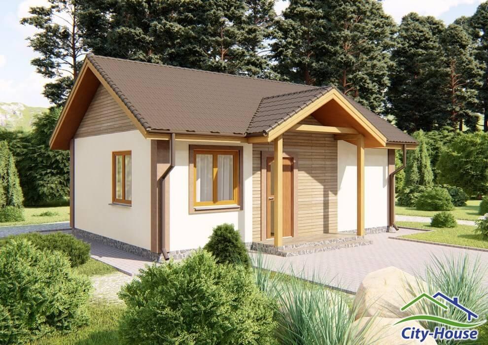 Проект одноэтажного дачного домика C1738 Боярка